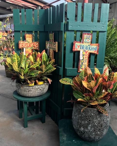 Come by to see our selection of beautiful potted plants perfect for the interior of your home!