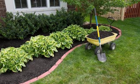 Edging takes your landscape to the next level.